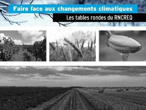 faire face aux changements climatiques conference-table-ronde-rncreq