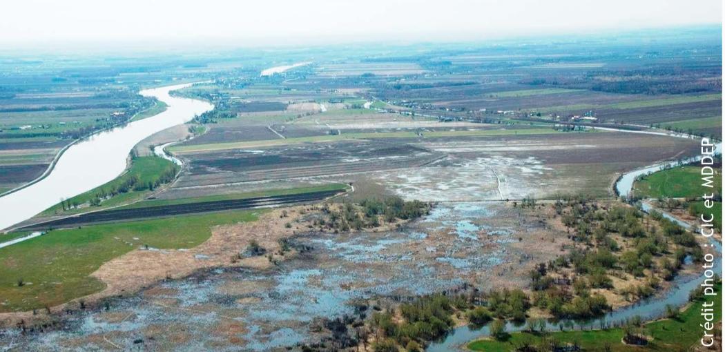 milieux-humides-et-hydriques-planifier-collectivement-la-conservation