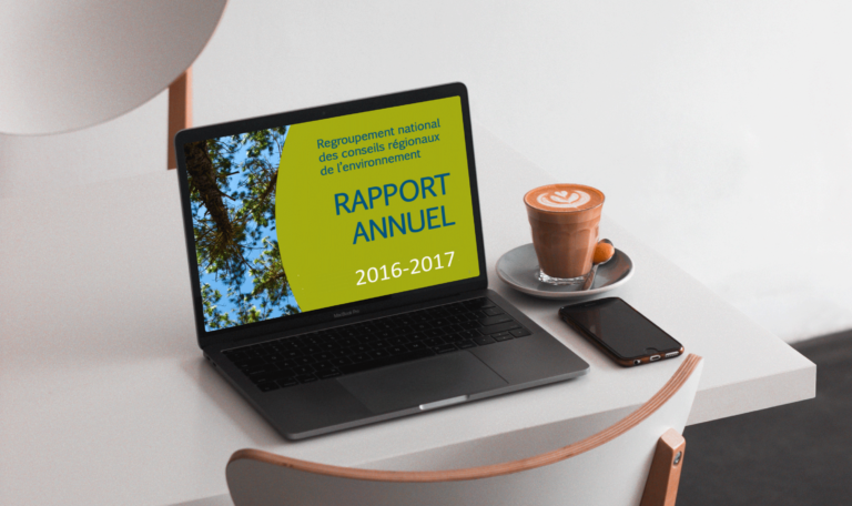 rapports_annuels_rncreq_2016-2017