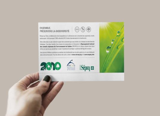 2010, année internationale de la biodiversité