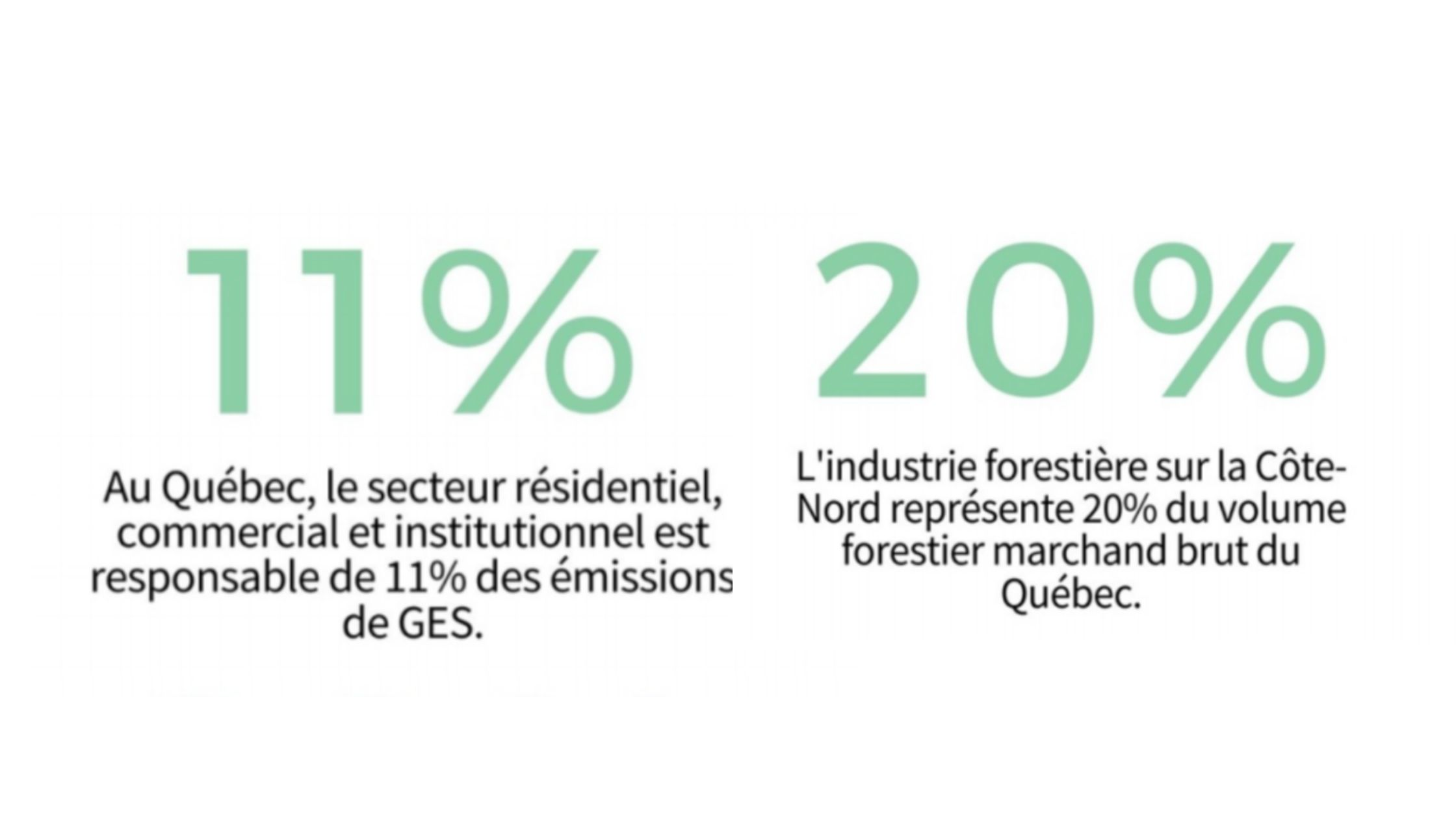 implantation-du-chauffage-a-la-biomasse-forestiere (1)