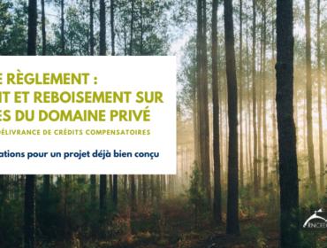 Mémoire sur le projet de Règlement quant au boisement et reboisement des terres du domaine privé